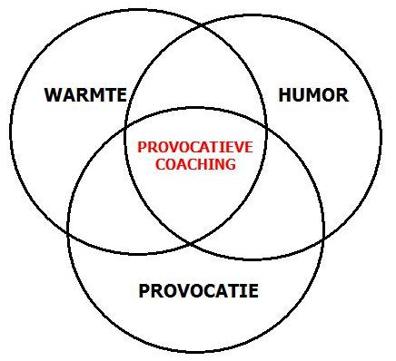 provo circels Provocatieve Coaching